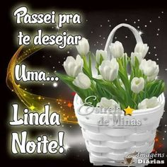 Boa noite Plants, Avatar, Quotes, Good Night Blessings, Good Night Sweet Dreams, Photos Of Good Night, Happy Monday, Beautiful Flowers, Photo Galleries