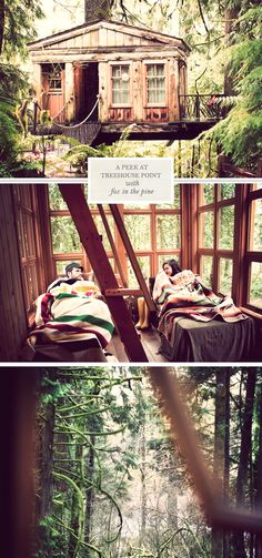 Rent a treehouse at Treehouse Point in the snoqualmie valley. So cool!