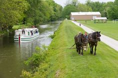 Canal Fulton, Ohio; The canal. Love my town and that the tow path is so close!!!