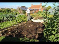 Start no dig, soil types, weeds, composts to use - No Dig Organic Gardening Planting Vegetables, Growing Vegetables, Vegetable Gardening, Organic Gardening, Gardening Tips, Compost Mulch, Mushroom Compost, Dig Gardens, Vegetable Garden