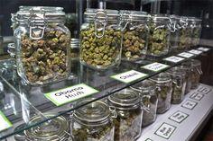 Cincuenta locales ya están preparados para vender cannabis en Uruguay La mayoría aún no se inscribió: algunas temen que su imagen quede afectada y otras argumentan motivos de seguridad. Para el gobierno, son suficientes para iniciar la experiencia...