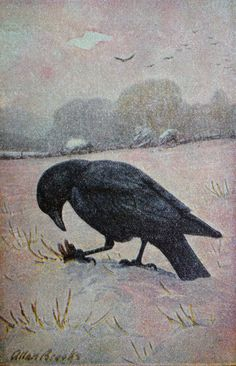 vintage 1930s Crow book plate by MouseTrapVintage on Etsy, $8.00