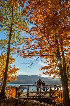 Randonnée au Mont Sourire à Saint-Donat dans Lanaudière. Parcs, Fall Photos, Quebec, Vancouver, The Good Place, Van Storage, Storage Ideas, Have Fun, Hiking