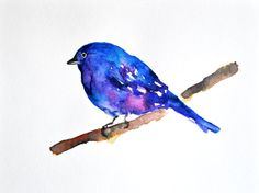 ORIGINAL Watercolor painting, Indigo bunting 6x8 inch