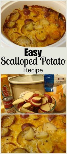 Easy Slow Cooker Scalloped Potatoes. Find this and more delicious crockpot recipes at http://slowcookerkitchen.com