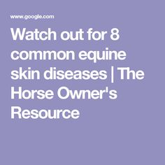 Watch out for 8 common equine skin diseases | The Horse Owner's Resource