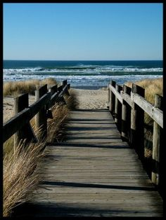 AH some day I will spend a Fall on a North Carolina beach and this will be my view...