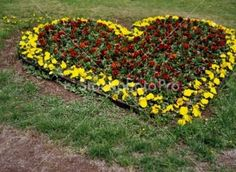A heart shaped flower bed