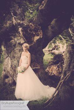 Hochzeitsfotos gibt Tipps rund um die Hochzeitsfotografie und schreibt über seine Angebote. Wedding Dresses, Wedding Photography, Round Round, Tips, Bridal Dresses, Bridal Gowns, Wedding Gowns, Weding Dresses, Wedding Dress