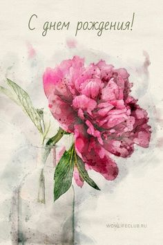 Congratulations, Bouquet, Happy Birthday, Flowers, Painting, Tiana, Peonies, Postcards, Quotes