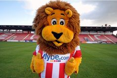 Exeter City - Grecian the Lion.