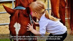 Equine Therapy - Horseback Riding Has Healing Powers for Children With Autism Big Horses, Horse Love, Horse Girl, Pretty Horses, Beautiful Horses, Classic Equine, Money Cant Buy Happiness, Young Animal, Cat Behavior