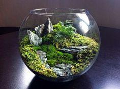 Smart Mini Indoor Garden Ideas (29)