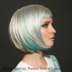 Tiffany-Conway-Global Partner Colorist/Goldwell 2013 Color Zoom U.S. Semi-Finalists