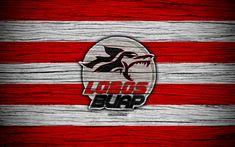 Download wallpapers Lobos BUAP FC, 4k, Liga MX, football, Primera Division, soccer, Mexico, Lobos BUAP, wooden texture, football club, FC Lobos BUAP