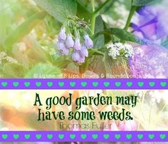 Garden quote via Ups, Downs, & Roundabouts at www.Facebook.com/UpsDownsRoundabouts
