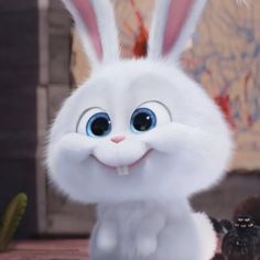 14 Best Snowball Images Cute Bunny Cartoon Snowball Rabbit