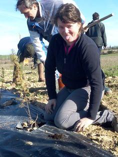 La ferme de Vanessa: La haie est plantée! Agriculture Biologique, Fictional Characters, Farmer, Farm Gate