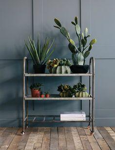 H: 88cm W: 80cm D: 40cm:  The distance between shelves is 24cms
