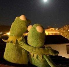 05 K k kurba a k k kurba a kuyru un nerede Kardelen sahikaye # K sa Hikaye # amreading # books # wattpad Frog Wallpaper, Cartoon Wallpaper, Cute Memes, Funny Memes, Sapo Kermit, Reaction Pictures, Funny Pictures, Les Muppets, Sapo Meme