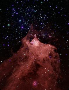 Trigger-Happy Star Formation (NASA, Chandra, 8/12/09). his composite image, combining data from the Chandra X-ray Observatory and the Spitzer Space Telescope shows the molecular cloud Cepheus B, located in our Galaxy about 2,400 light years from the Earth. A molecular cloud is a region containing cool interstellar gas and dust left over from the formation of the galaxy and mostly contains molecular hydrogen.