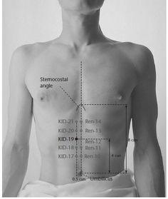 KID-19 Yin Metropolis YINDU - Acupuncture Points -1