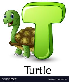 Letter t is for turtle cartoon alphabet Royalty Free Vector Alphabet Nursery, Alphabet For Kids, Animal Alphabet, Learning The Alphabet, Alphabet And Numbers, Alphabet Phonics, Happy Birthday Animals, Animal Birthday, Winnie The Pooh Gif