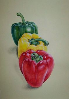Food Painting, Painting & Drawing, Watercolor Paintings, Colour Pencil Shading, Color Pencil Art, Vegetable Painting, Fruits Drawing, Watercolor Fruit, Polychromos