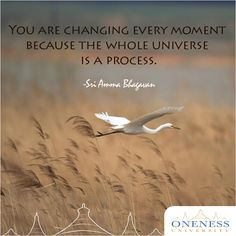 You are changing every moment because the whole universe is a process. -Sri Amma Bhagavan