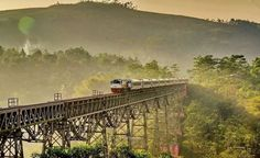 - Enjoy The View From the Train From Semarang to Jakarta Sept 2019 Semarang, Jakarta, Locomotive, Multimedia, Trains, Adventure, World, Photography, Outdoor