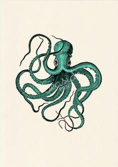 Seaside wall art Print Vintage octopus n2- sea foam color -sea life print- free shipping- vintage natural history. $12.00, via Etsy.