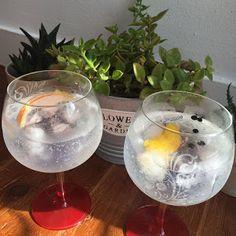 Os gins do final da tarde