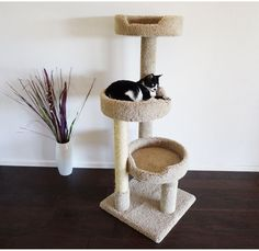 Tree Cat Condo Premier Kitty Pad Top Perch Cradle Wooden Frame Tubing Sturdy NEW #PremierKittyPadCatTree