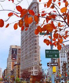 NYC. FALL. Flatiron Bldg.