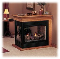 Ventless Gas Fireplace traditional
