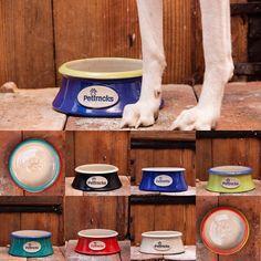 Cat Supplies, Pet Bowls, Your Pet, Ceramics, The Originals, Pets, Unique, Instagram, Ceramica