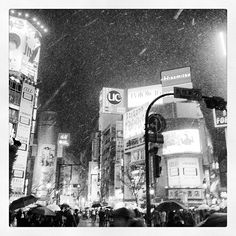 Sibuya(Snowy night)