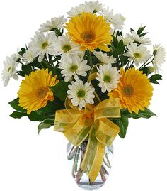 white with yellow | Canada Flowers > Mother's Day > Fresh and Cheerful #32