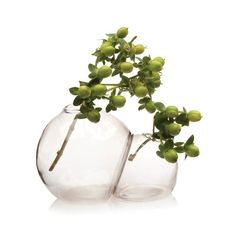 Bubble Twin Vase | D