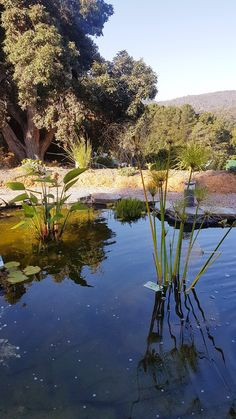 Paradise, River, Mountains, Nature, Outdoor, Outdoors, Naturaleza, Outdoor Games, Outdoor Life
