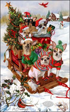 Effective Potty Training Chihuahua Consistency Is Key Ideas. Brilliant Potty Training Chihuahua Consistency Is Key Ideas. Christmas Scenes, Christmas Animals, Christmas Dog, Christmas Pictures, Vintage Christmas, Christmas Cards, Animals And Pets, Cute Animals, Baby Animals