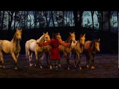 Created by one of the founders of Cirque du Soleil, Cavalia Odysseo is a theatrical experience, an ode to horse and man that marries the equestrian arts, awe inspiring acrobatics and high-tech theatrical effects