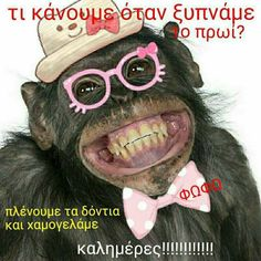 Good Morning, Jokes, Pictures, Funny, Mornings, Greek, Relax, Humor, Gift