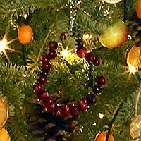 cranberry holiday wreath rings, dried orange slices and gingerbread cookie tree decorations