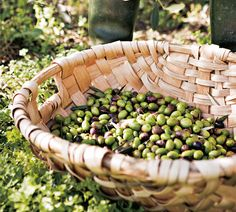 olives in a basket Sicilian Olives Recipe, Olive Recipes, Easy Recipes, Under The Tuscan Sun, Pitted Olives, Olive Gardens, Olive Tree, Fruit Drinks, The Fresh
