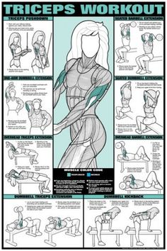 Triceps Workout for women #health #exercise