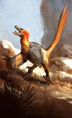 Si l'on sait depuis plusieurs années que les dinosaures comme les Tyrannosaures ou les Vélociraptors ne ressemblaientpas du tout à ce que l'on pensait et p
