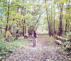 These amazing nature views make me addicted to mountainbiking #mountainbiking #nature #specialized #rockhopper #mountainbike #mtb #woods #fitgirl #outdoors #endurance #autumn #fitness #beautifulnature #healthy #body #sports #workout #fitfam #instafit #fitspo #healthychoice #sporty #explore #adventure #fitspiration #fitlife #fitmotivation ( # @liendobbelaere via @latermedia )