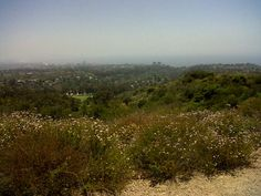 santa monica bluffs
