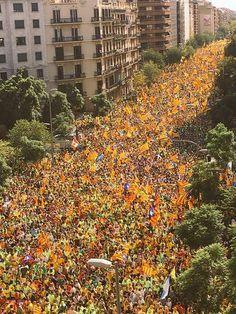 Barcelona 2017, Barcelona Spain, Portugal, Image Cat, Gaudi, Tourism, Europe, Country, World
